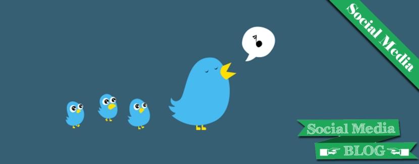 seguidores Social Meida